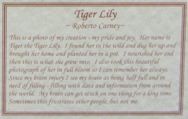 tiger-lily-description